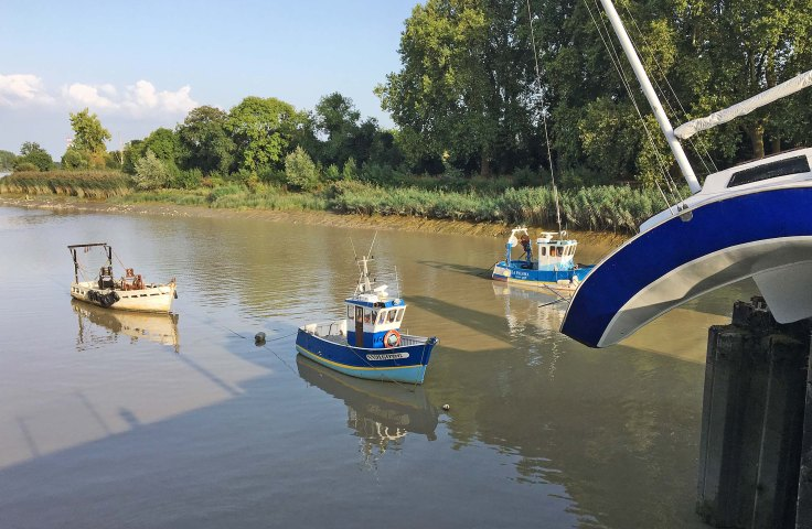 bato-mou-avec-bateaux