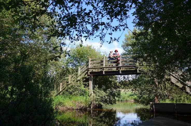 pont-avec-promeneurs